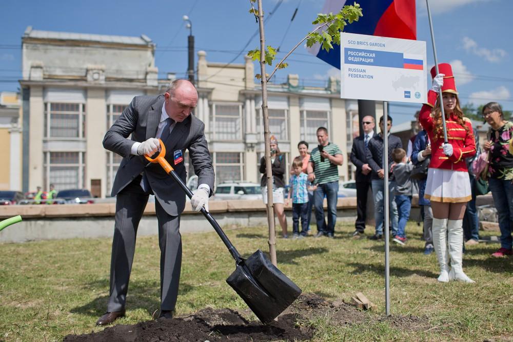 Как сообщили агентству «Урал-пресс-информ» в пресс-службе губернатора, в саду высадили 10 остроли