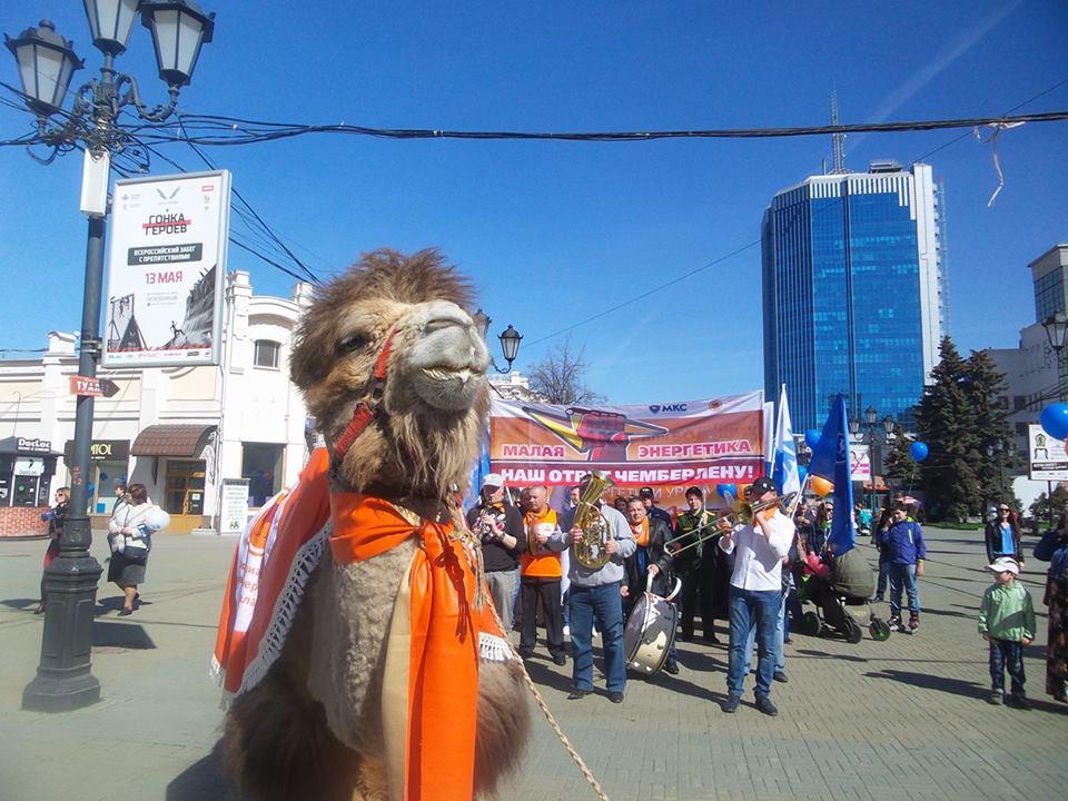 В Челябинск первыми митинг на площади Революции провели представители Российского объединенного т