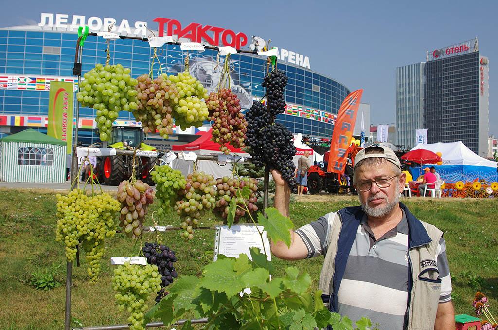 Агропромышленная выставка будет проходить с 17 по 19 августа на территории Ледовой арены «Трактор