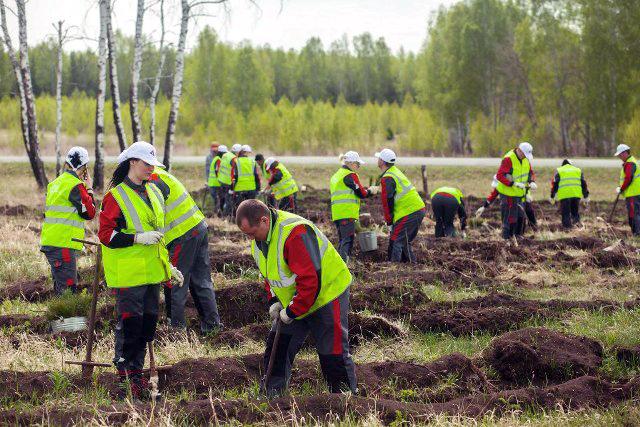 На благотворительную акцию по лесовосстановительным работам предприятие направило порядка 1 млн р
