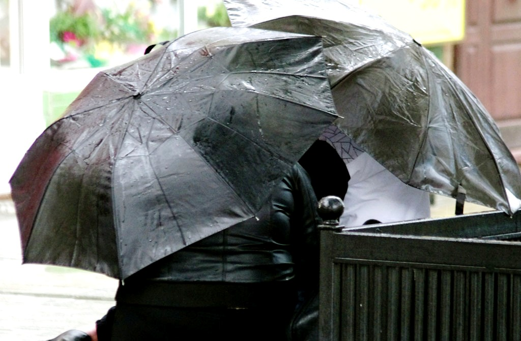 Погода мешает чиновникам Челябинска приступить к озеленению города. Из-за холодов подрядные орган