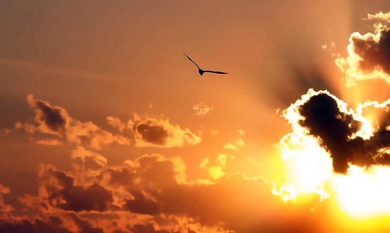 В ночь с 22 на 23 сентября в северном полушарии наступит астрономическая осень, в южном – весна.