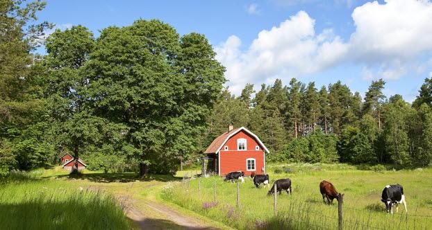 Фермеры теперь смогутстроить дом для себя на своей земле сельскохозяйственного назначения.