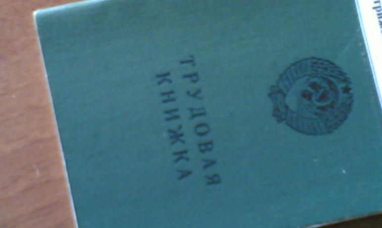 Жителям Челябинской области придется определиться со способом ведения трудовой книжки. Южноуральц
