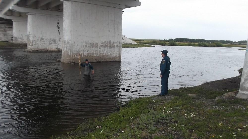 Как сообщает ГУ МЧС России по области, специалисты МЧС проводят работу по мониторингу ситуации на