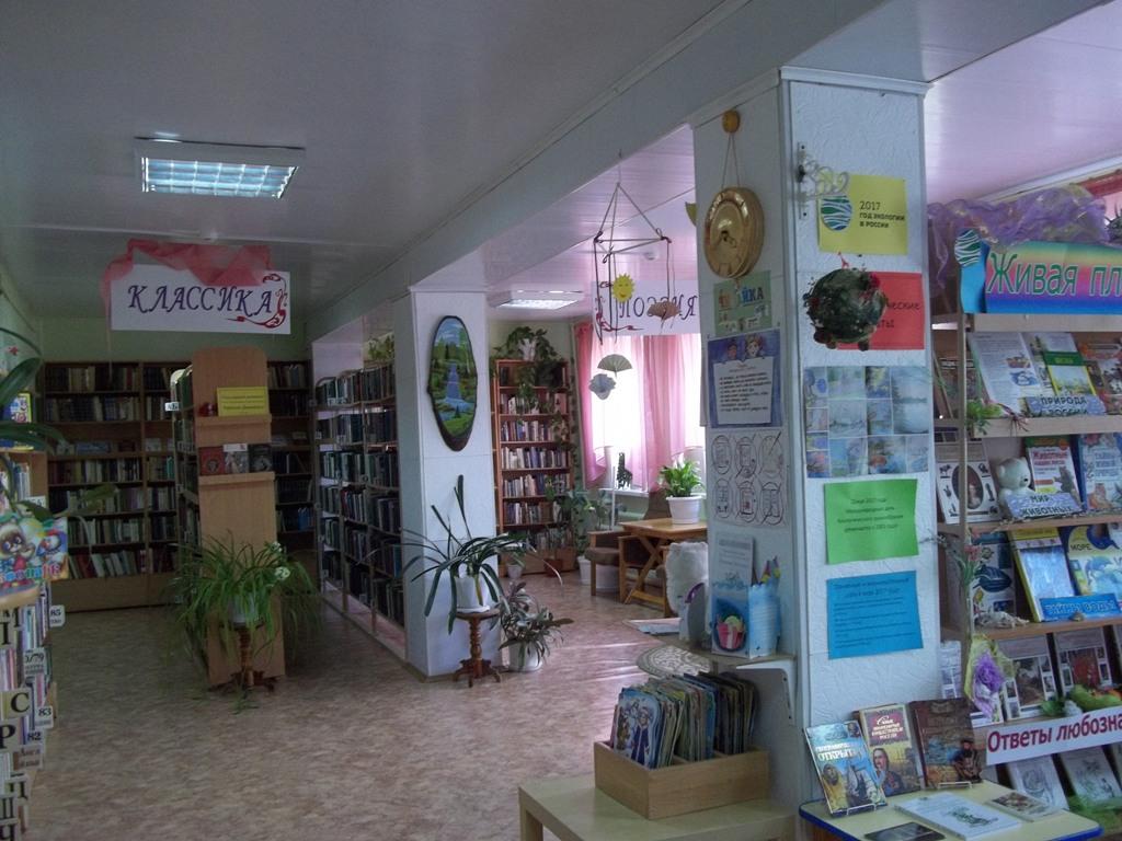 Публичные библиотеки в сельской местности остались единственными бесплатными (такое