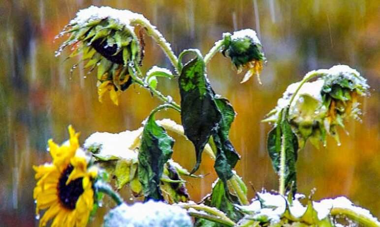 В предстоящие сутки в Челябинской области ожидается ухудшение погодных условий – мокрый снег с до