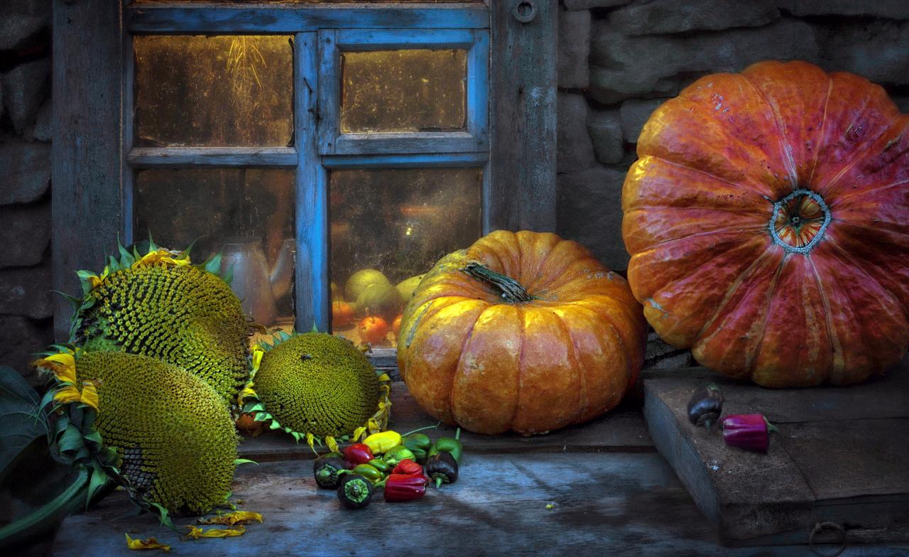 В Челябинске сегодня, десятого октября, наградят победителей фотоконкурса «Настроение - Осень», к
