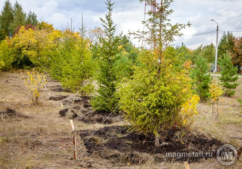 В 2018 году затраты Магнитогорского металлургического комбината на природоохранные цели составили