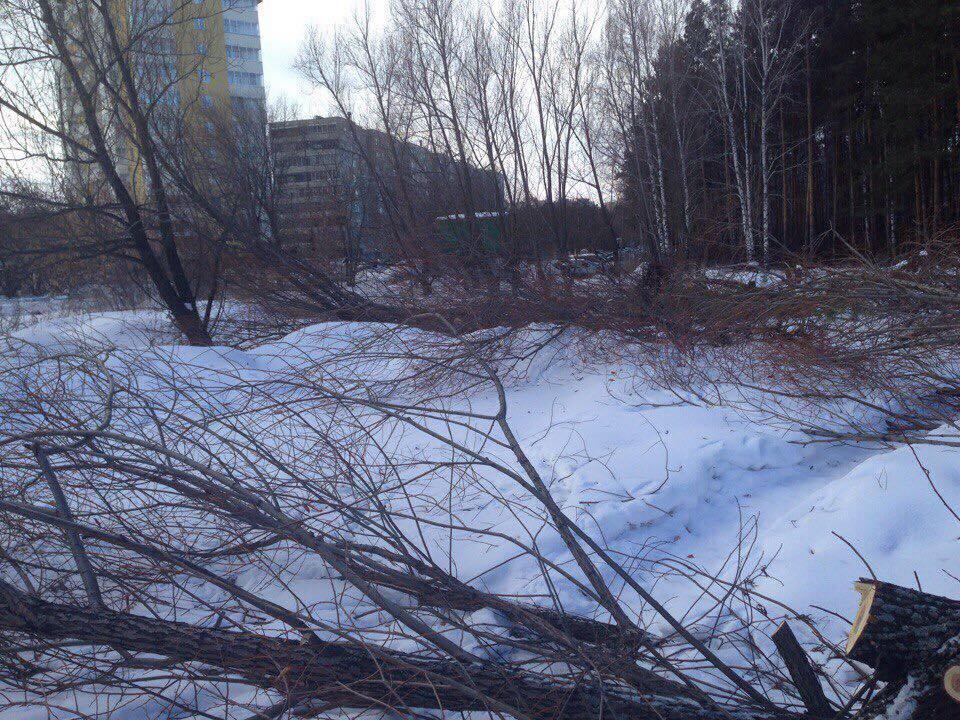 Напомним, жители домов, расположенных вдоль сквера на улице Захаренко, обратились в экологическую