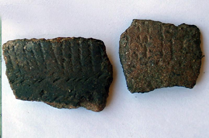 Как сообщили в пресс-службе ЧелГУ, настоящей сенсацией для ученых стал бронзовый ритуальный кинжа
