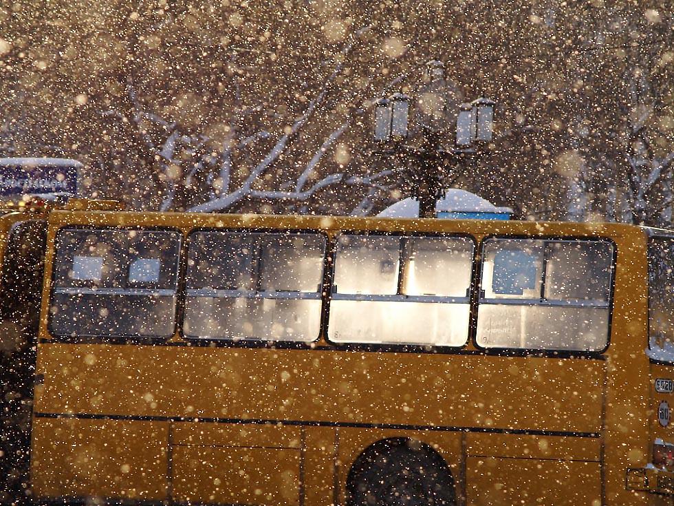 Как уточнил сегодня, 8 декабря, начальник городского управления транспорта Олег Козлов на аппарат
