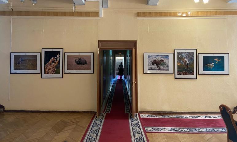 В здании правительства Челябинской области вчера, 6 июля, открылась новая фотовыставка Государств
