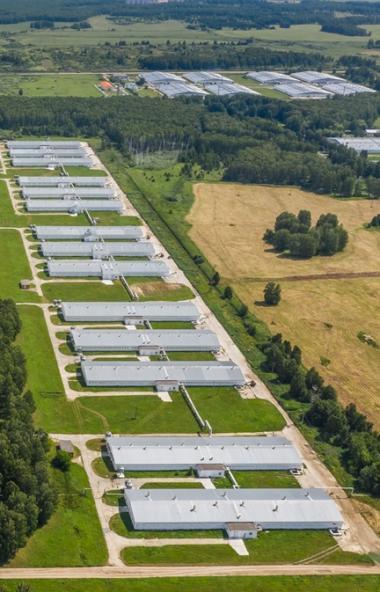 В наступившем году агрохолдинг «Равис» (Челябинская область) продолжит радовать гурманов из Подне