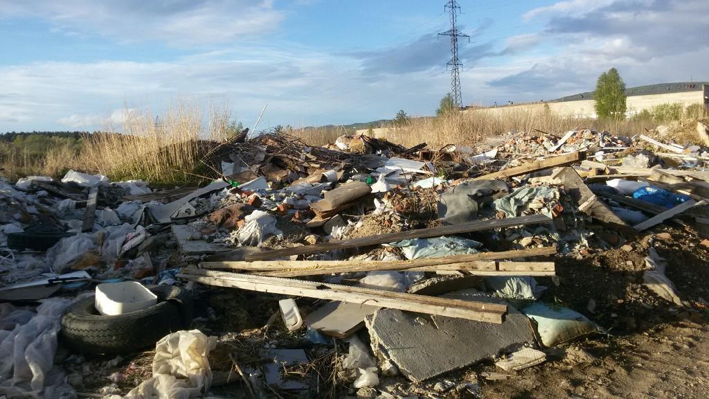 Жители Миасса (Челябинская область) пожаловались общественникам на стихийную свалку чудовищных ма