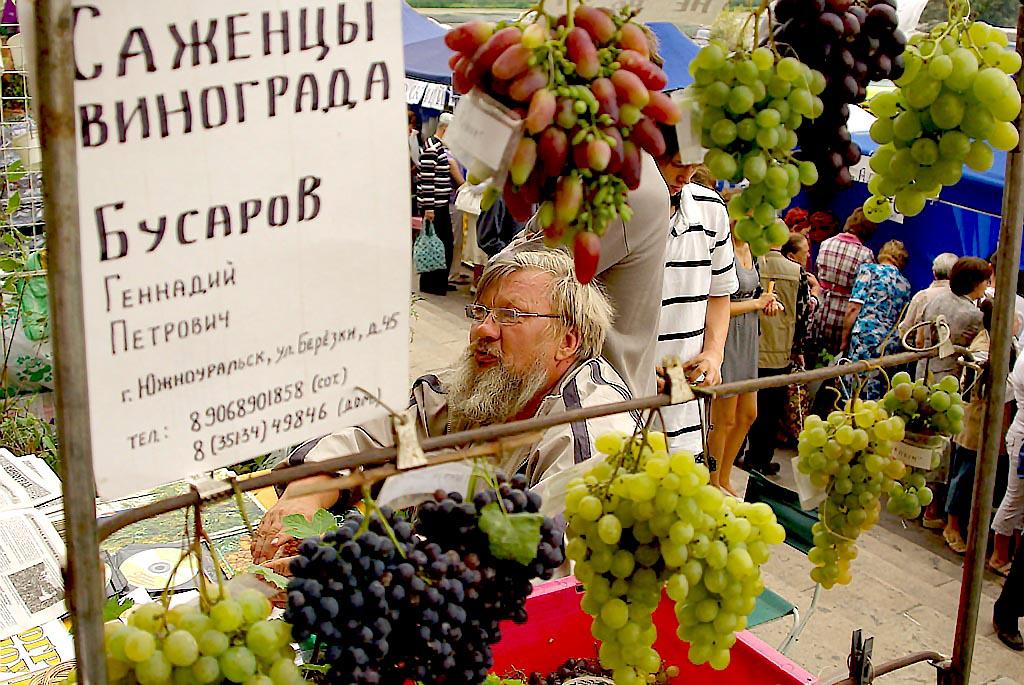 Самая крупная аграрная выставка региона во всем разнообразии представит лучшее, что производится