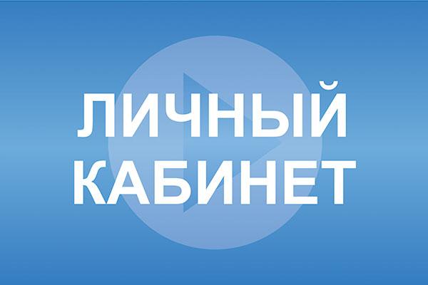 Воспользовавшись интерактивным сервисом, жители Челябинска и области, а также представители юриди
