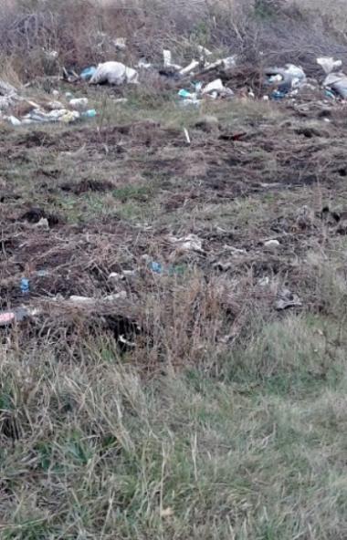 Россельхознадзор Челябинской области обнаружил несанкционированную свалку в селе Чудиново Октябрь