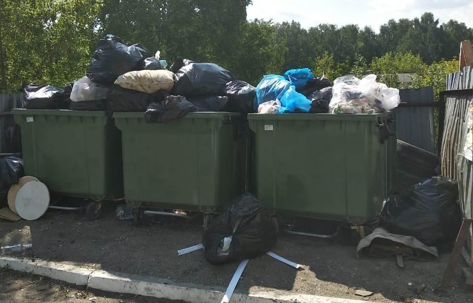 В Миассе (Челябинская область) случился мусорный коллапс. Как заявляют местные общественники, выв