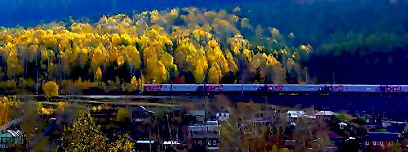 В билетных кассах Южно-Уральской железной дороги на перевозку багажа в багажном купе оформлено 30