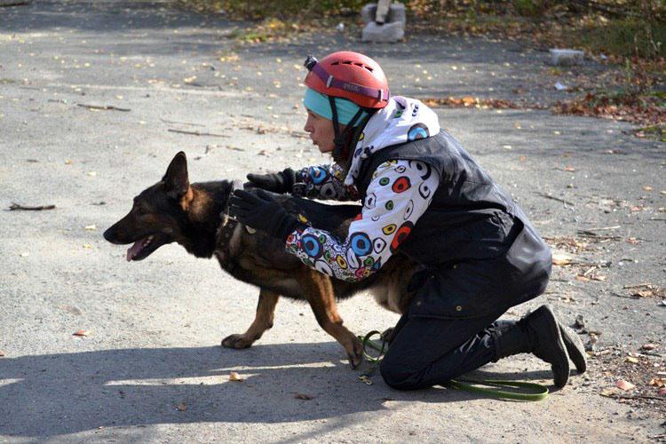 В Сосновском районе (Челябинская область) потерялся ребенок, страдающий аутизмом. Поиски продолжа