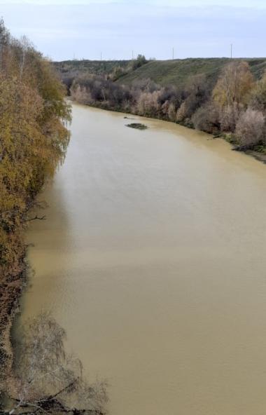 В Челябинской области появилась своя Желтая река - как в Китае: Миасс неожиданно изменил цвет. Пр