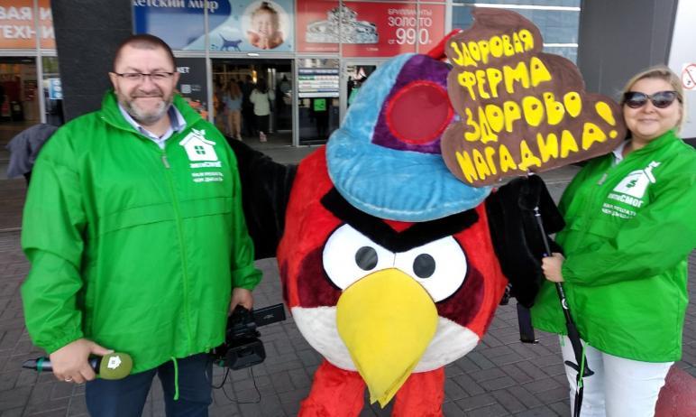 Челябинские общественники из организации «АнтиСМОГ» посвятили компании «Здоровая ферма» акцию «Хв