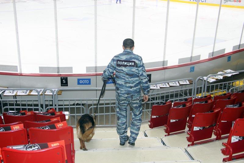 В общей сложности апрельские хоккейные матчи, когда на льду южноуральской столицы играли челябинс