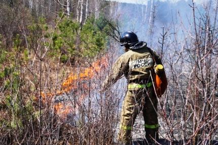 В Челябинской области пожар в СНТ «Восточный» Кыштыма, случившийся в понедельник, 14-го мая, пере