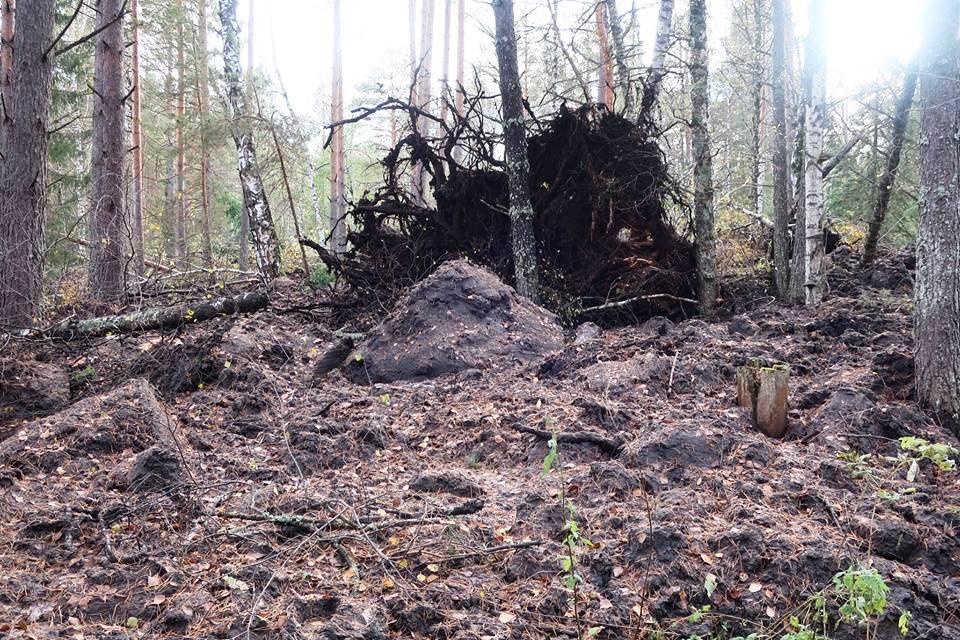 Ущерб от землетрясения в Катав-Ивановском районе Челябинской области, которое произошло пятого се