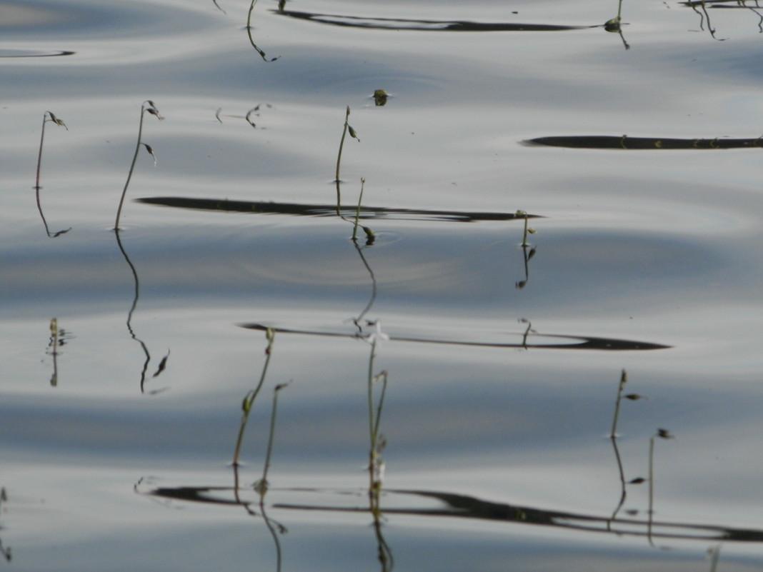 Тело школьника нашли в реке Теча около поселка Бродоколмак Красноармейского района