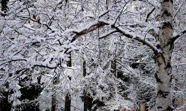 Жителей Челябинской области предупреждают об ухудшении погодных условий в предстоящие сутки.