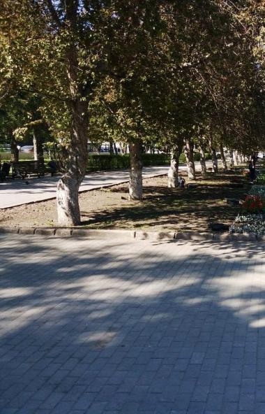 В Челябинске по-прежнему актуальной остается проблема переполненных урн. Глава города Наталья Кот