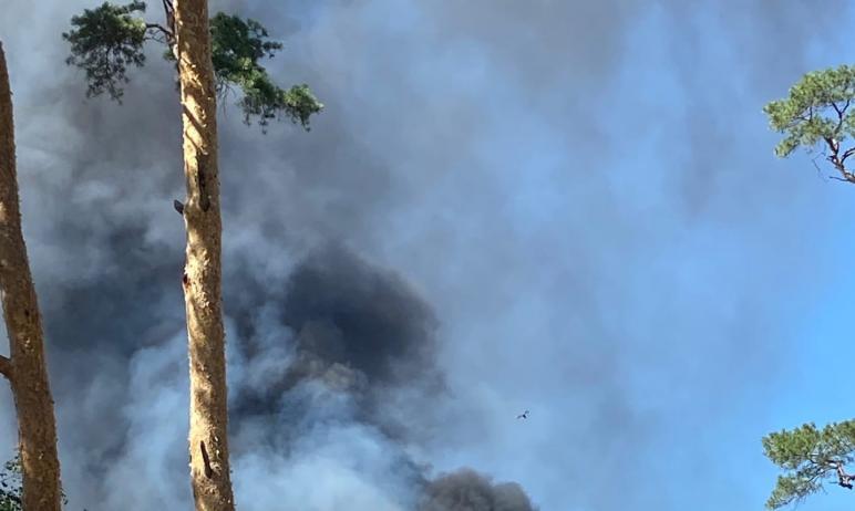 В Челябинске в районе городского зоопарка днем 13 июня зарегистрировано сильное возгорание.