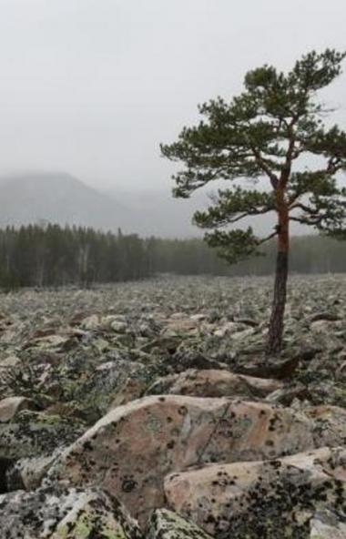 В национальном парке «Таганай» (Челябинская область) прокладывают маршрут к Большой Каменной реке