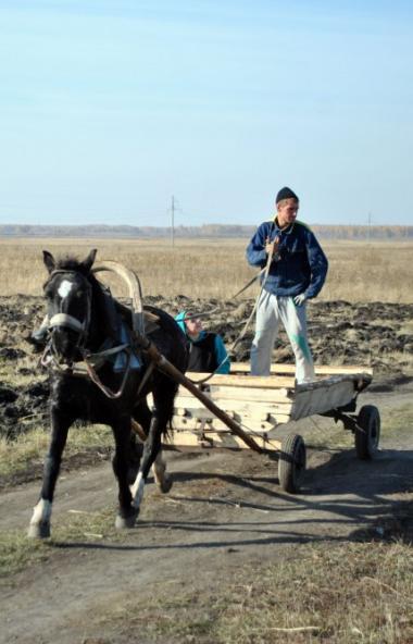 В минсельхозе Челябинской области определили получателей грантов «Агростартап» 2020 года. Победит