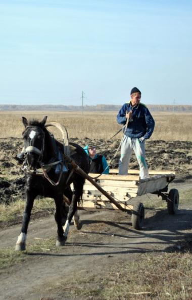 В Челябинской области количество пожаров на объектах сельскохозяйственного назначения в 2020 году
