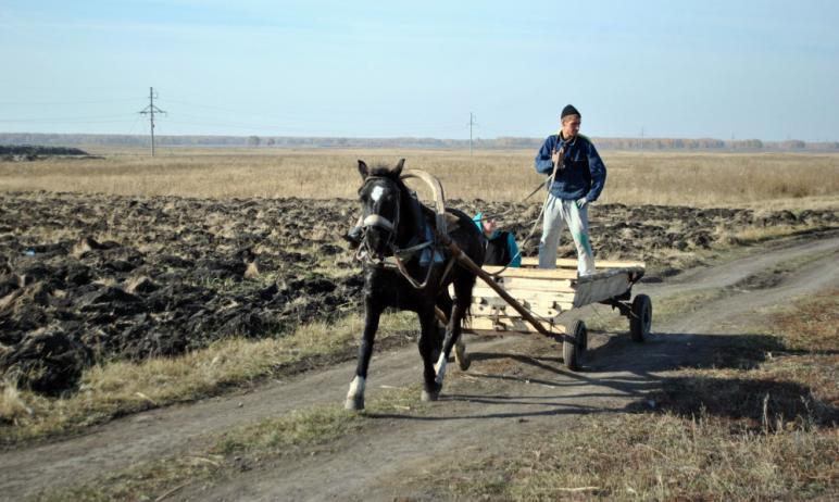 Жители Зауралово Чебаркульского района (Челябинская область) жалуются, что не могут выехать из св