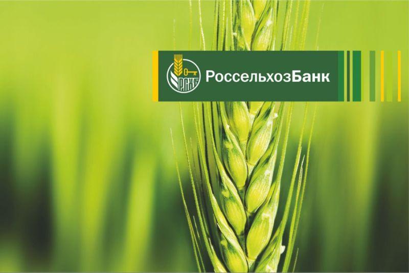 Кредитная поддержка малого бизнеса – одно из ключевых направлений деятельности филиала Россельхоз
