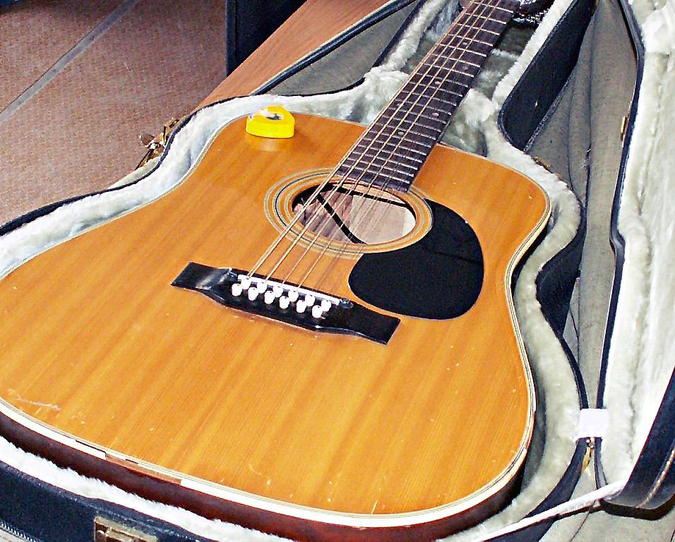 Лучшие гитаристы страны соберутся в Южно-Уральском институте искусств в 14 раз. В этом году в орг
