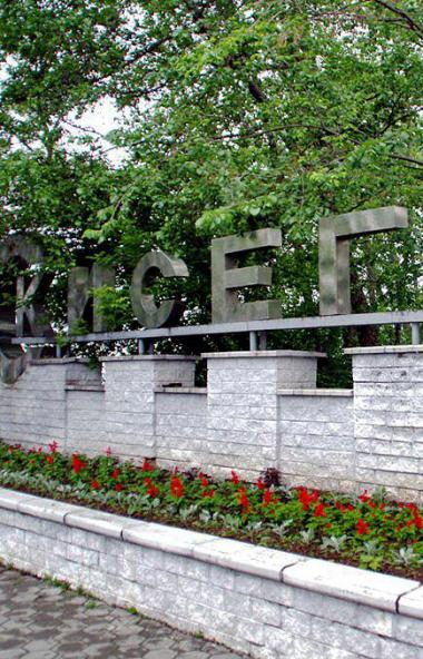 Губернатор Челябинской области Алексей Текслер поручил организовать постоянную систему мониторинг