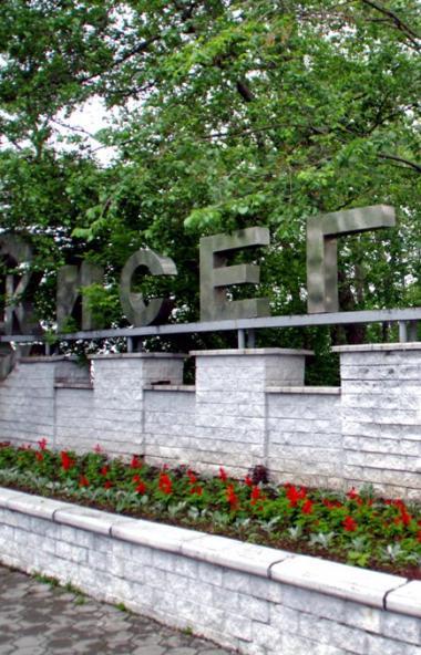 Челябинская область не сможет без поддержки федерального центра решить ряд застарелых проблем кур
