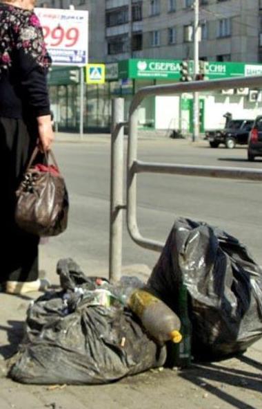 Жители Челябинской области теперь могут пожаловаться на переполненный мусорный контейнер или неса
