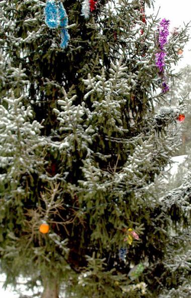 Сегодня, 14 января, по народному календарю отмечается Васильев день, который до календарной рефор