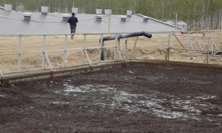В агрофирме «Ариант» отрицают загрязнение питьевого источника Челябинской области - реки Увелька