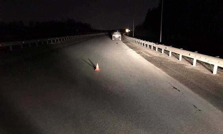 В Коркино (Челябинская область) неустановленный водитель сбил пешехода и оставил его умирать на д