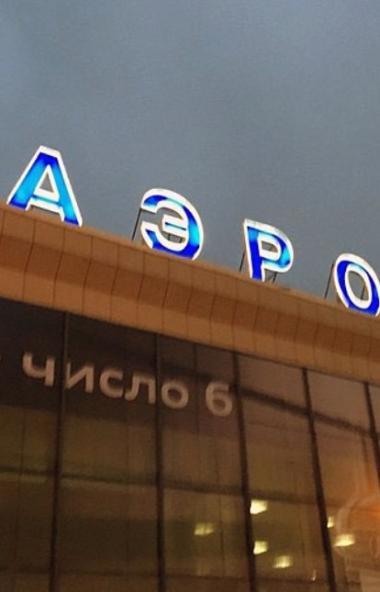 В Челябинске за дым на летном поле задержаны двое пассажиров рейса до Москвы. Мужчины 1980