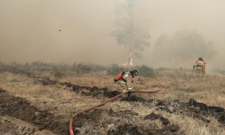 В Карталинском районе (Челябинская область), где бушуют лесные пожары, прошел сильный дождь. Площ