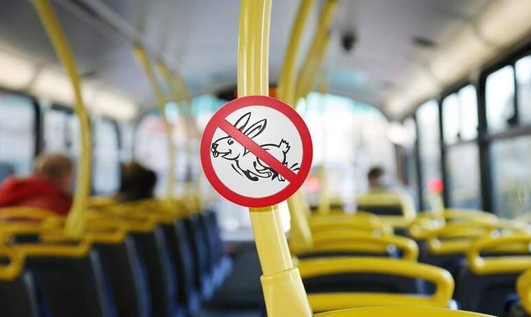 В Челябинской области увеличили размеры штрафов за безбилетный проезд в общественном транспорте.