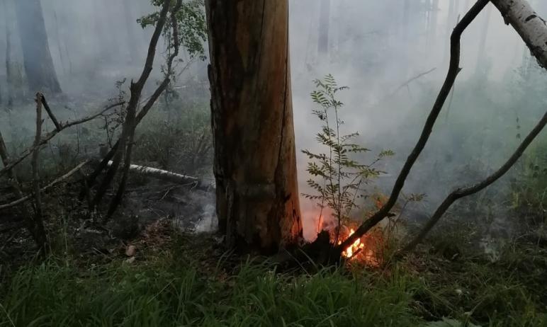 В Челябинской области на подступах к национальному парку «Таганай» горит лес. Площадь пожара уже
